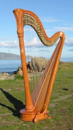 kim webby harp 2